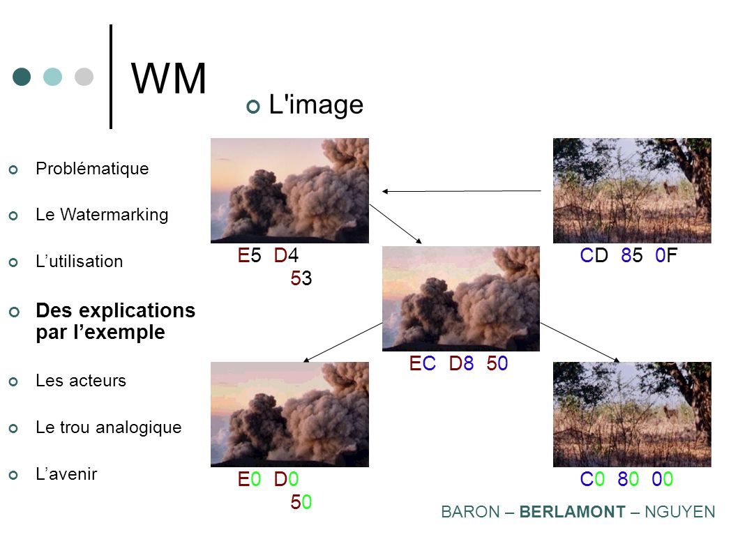 WM L image. CD 85 0F. E5 D4 53. EC D8 50. E0 D0 50. C0 80 00. Problématique. Le Watermarking.