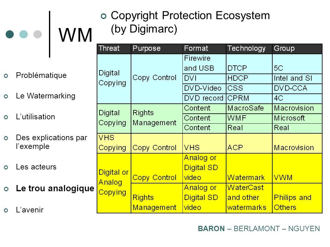 WM Copyright Protection Ecosystem (by Digimarc) Le trou analogique