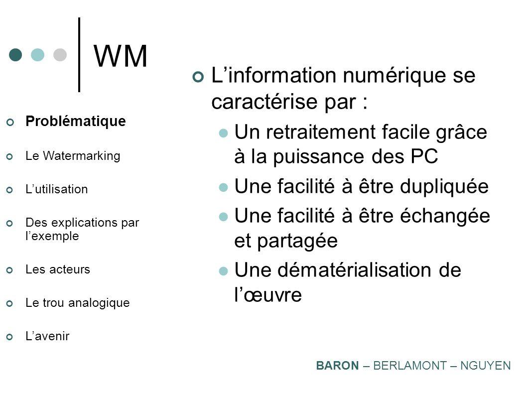 WM L'information numérique se caractérise par :