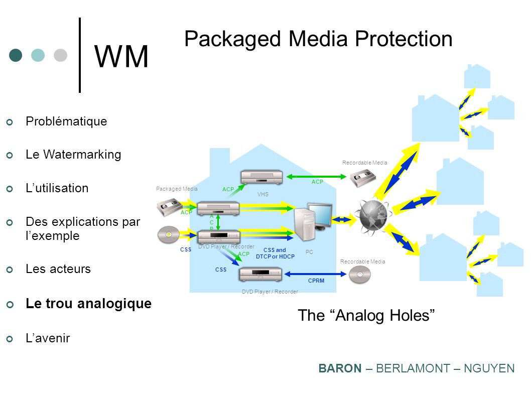 WM Packaged Media Protection The Analog Holes Le trou analogique