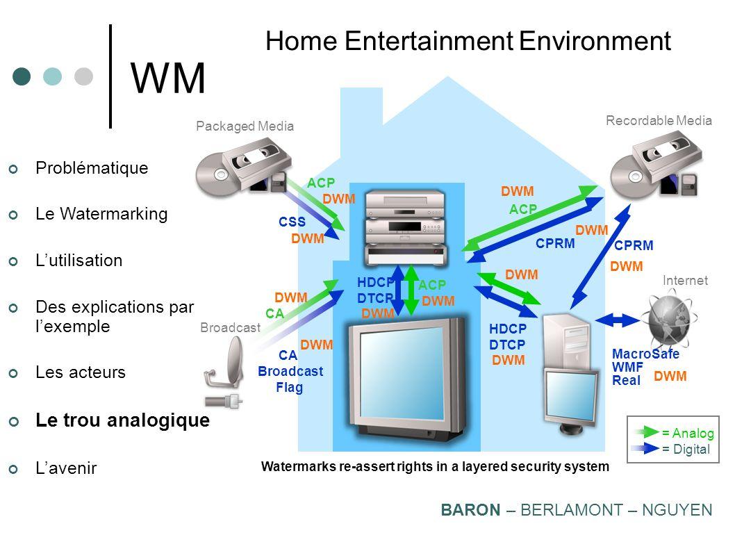 WM Home Entertainment Environment Le trou analogique Problématique