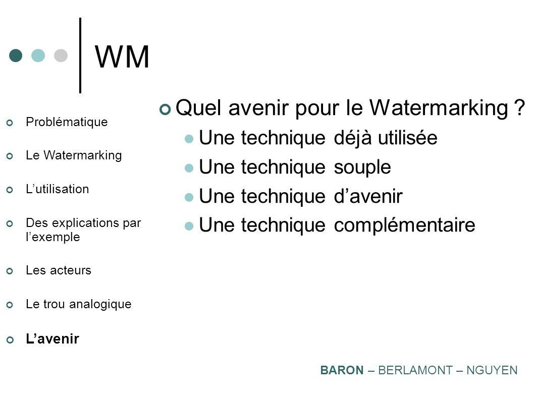 WM Quel avenir pour le Watermarking Une technique déjà utilisée