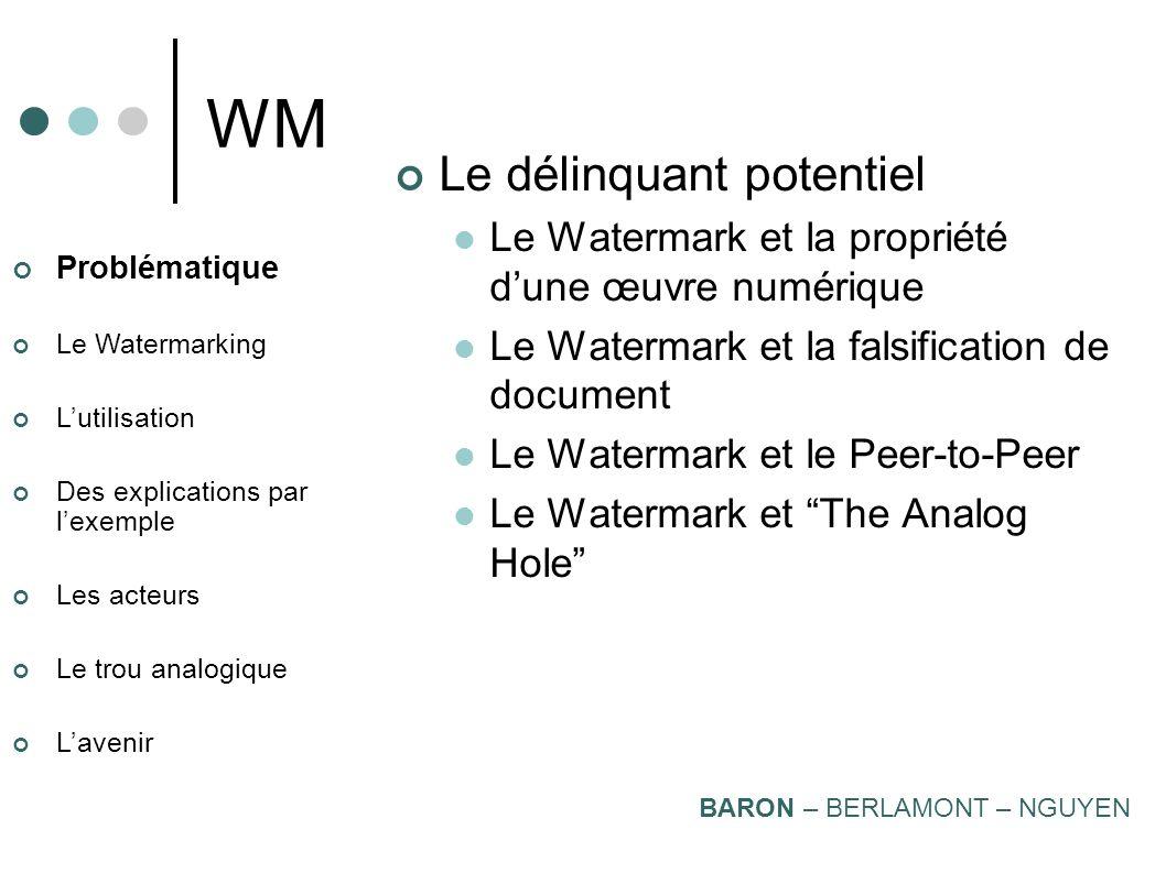 WM Le délinquant potentiel