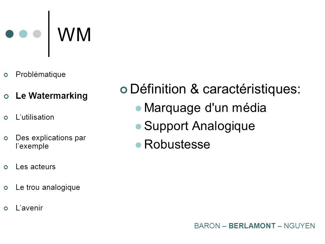 WM Définition & caractéristiques: Marquage d un média