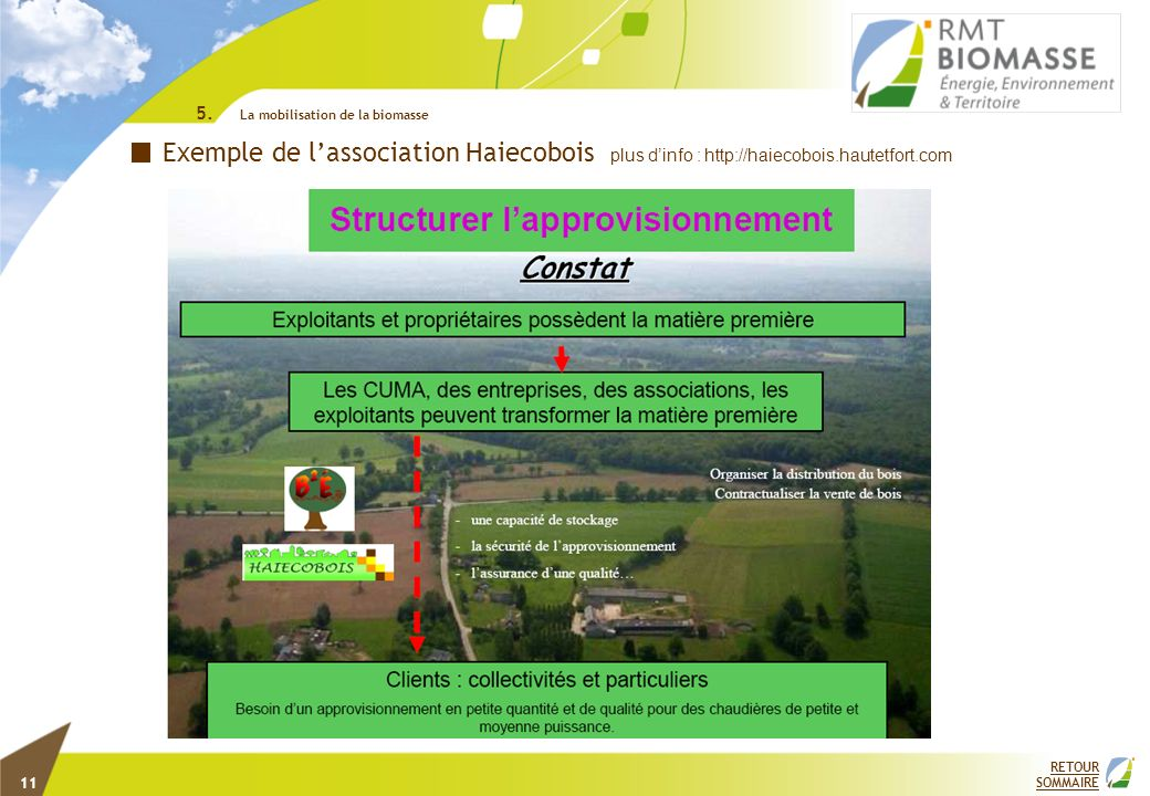 EXEMPLE DE STRUCTURATION DES ACTEURS ECONOMIQUE