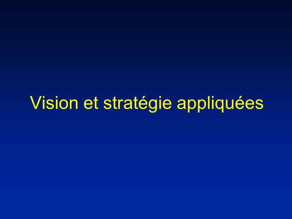 Vision et stratégie appliquées