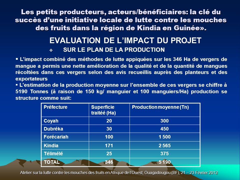 EVALUATION DE L'IMPACT DU PROJET SUR LE PLAN DE LA PRODUCTION