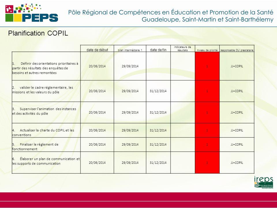 Planification COPIL date de début. bilan intermédiaire 1. date de fin. indicateurs de résultats.