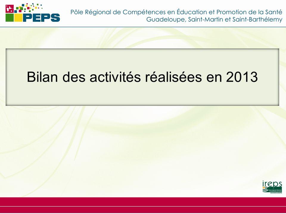 Bilan des activités réalisées en 2013