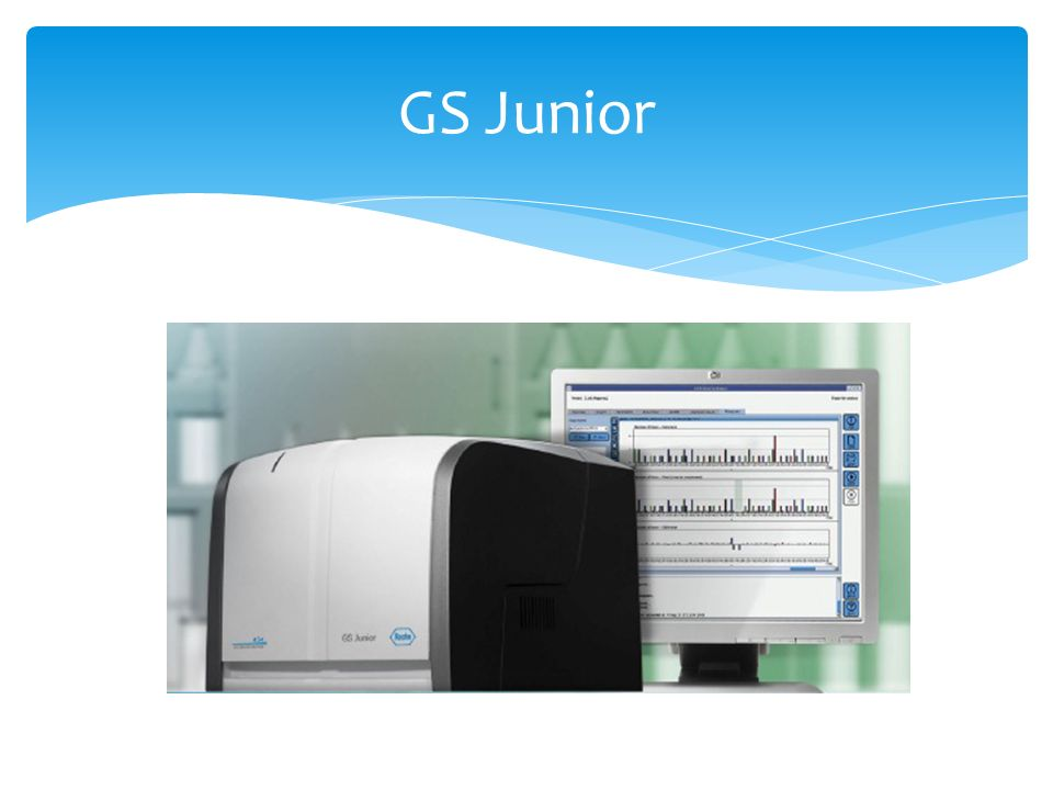 GS Junior