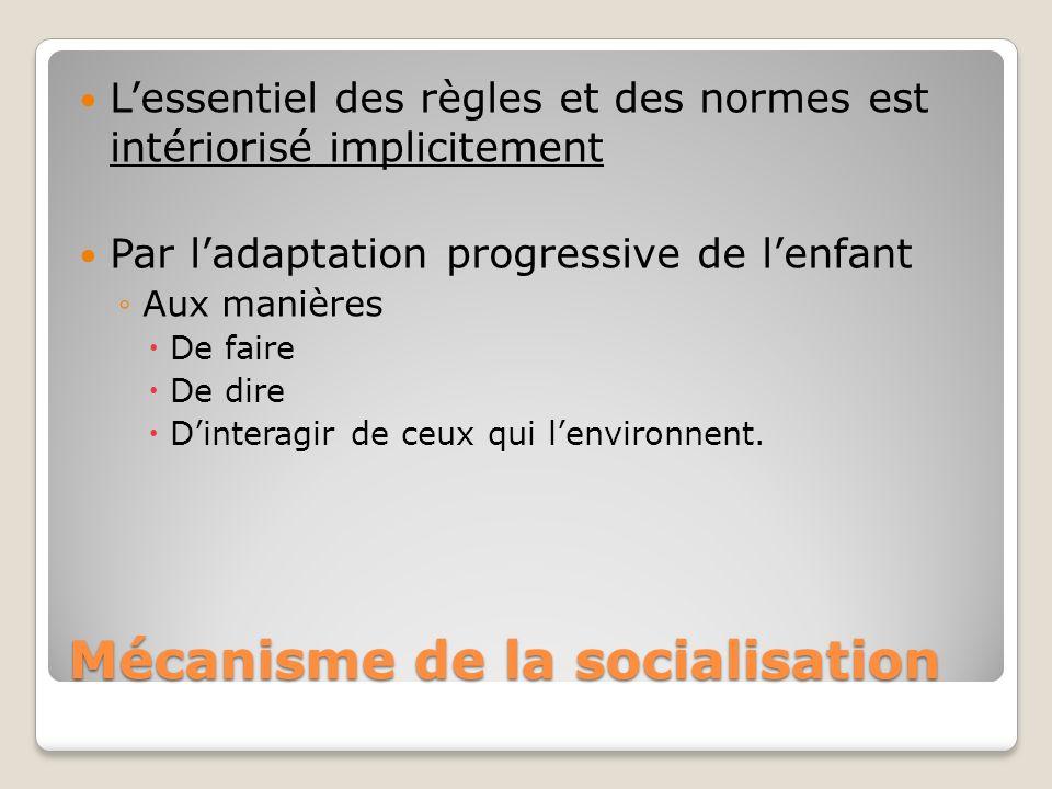 Mécanisme de la socialisation