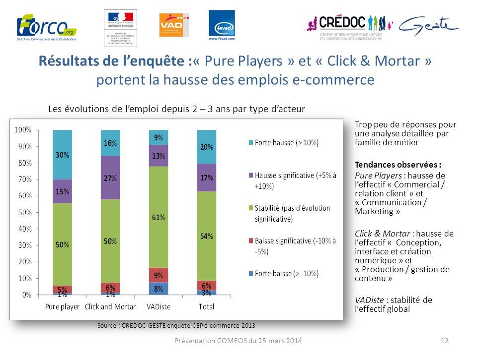 Résultats de l'enquête :« Pure Players » et « Click & Mortar » portent la hausse des emplois e-commerce