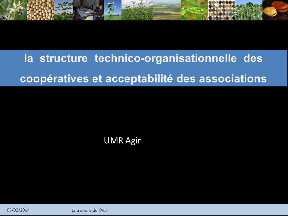 la structure technico-organisationnelle des