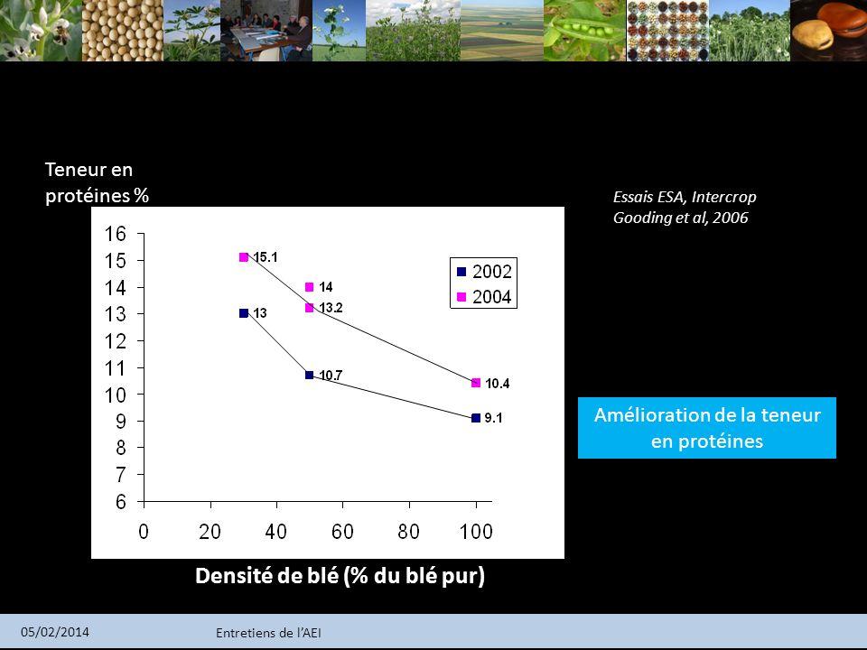 Densité de blé (% du blé pur)