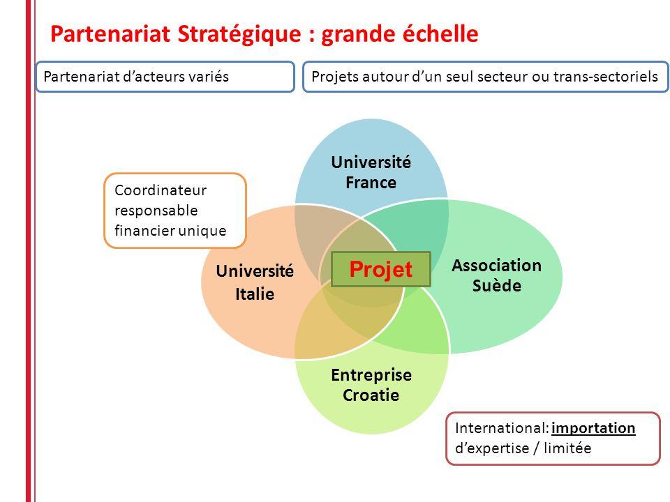 Partenariat Stratégique : grande échelle