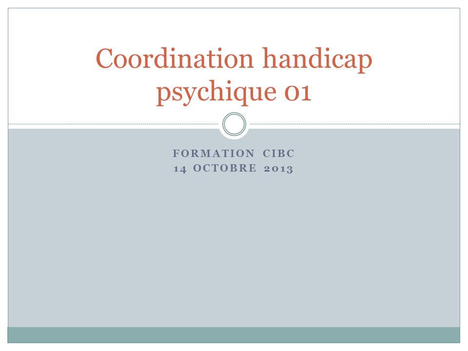 Coordination handicap psychique 01