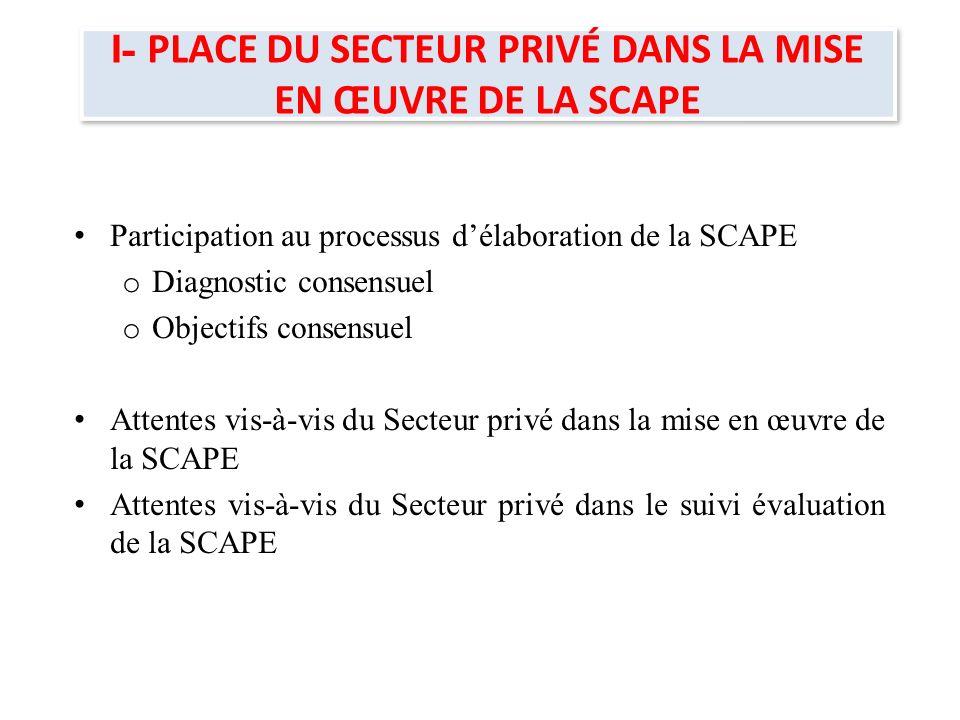 I- PLACE DU SECTEUR PRIVÉ DANS LA MISE EN ŒUVRE DE LA SCAPE