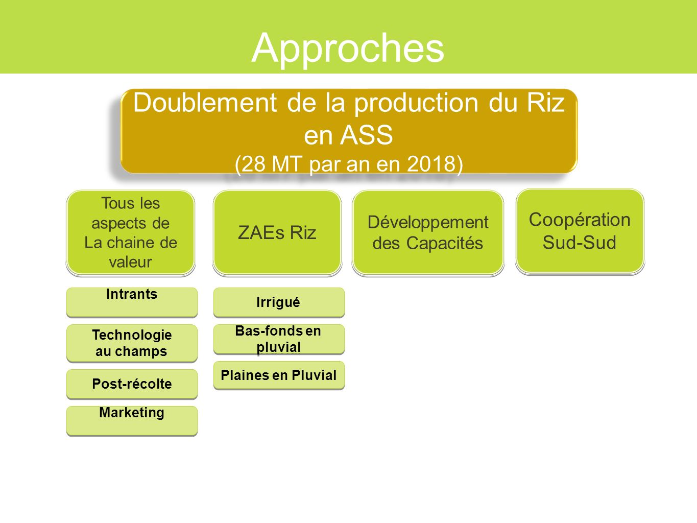 Approches Doublement de la production du Riz en ASS
