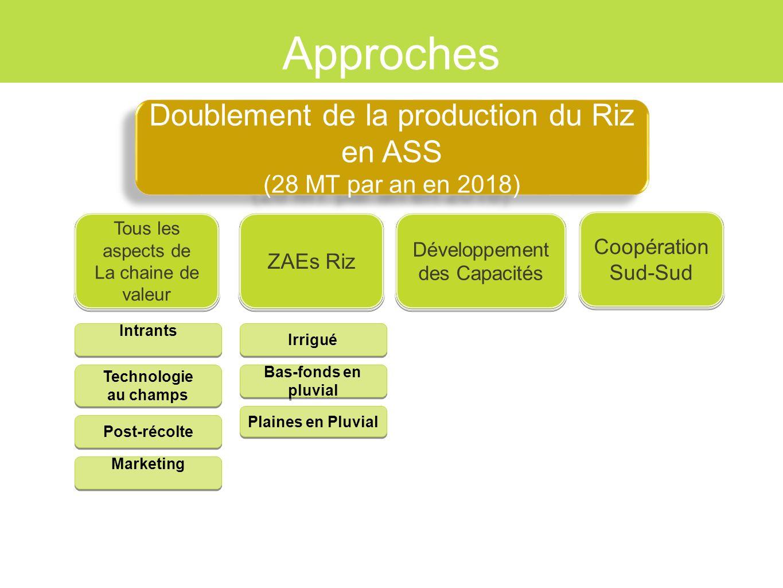 Approches Doublement de la production du Riz en ASS
