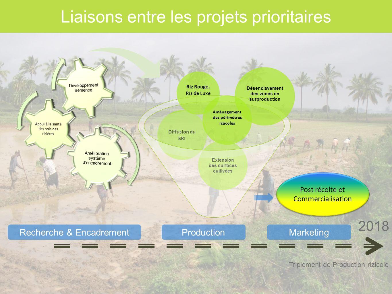 Liaisons entre les projets prioritaires