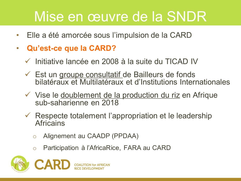 Mise en œuvre de la SNDR Elle a été amorcée sous l'impulsion de la CARD. Qu'est-ce que la CARD Initiative lancée en 2008 à la suite du TICAD IV.
