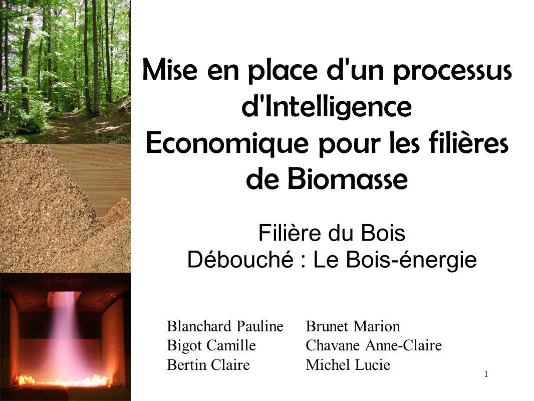 Filière du Bois Débouché : Le Bois-énergie