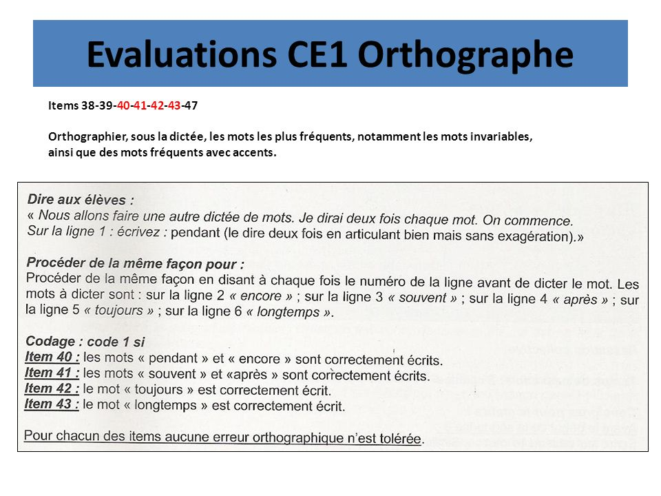 Evaluations CE1 Orthographe