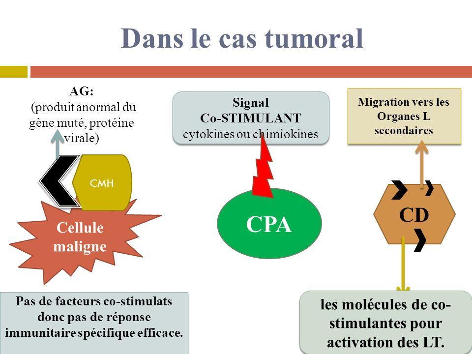 Dans le cas tumoral CPA CD Cellule maligne