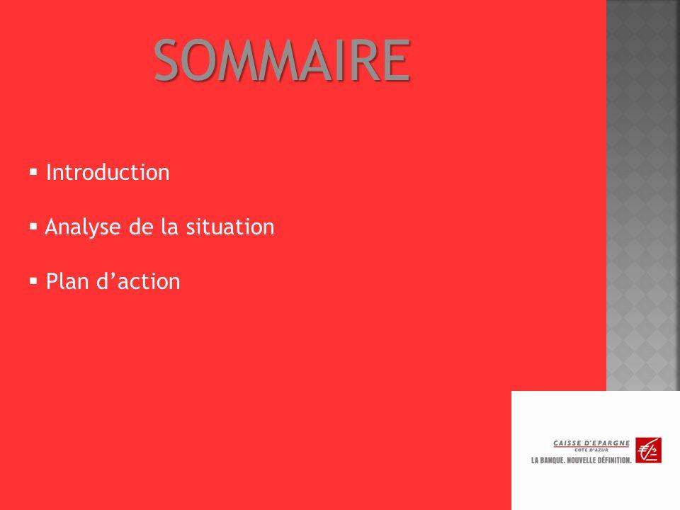 SOMMAIRE Introduction Analyse de la situation Plan d'action