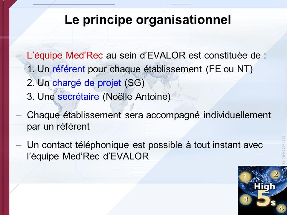 Le principe organisationnel