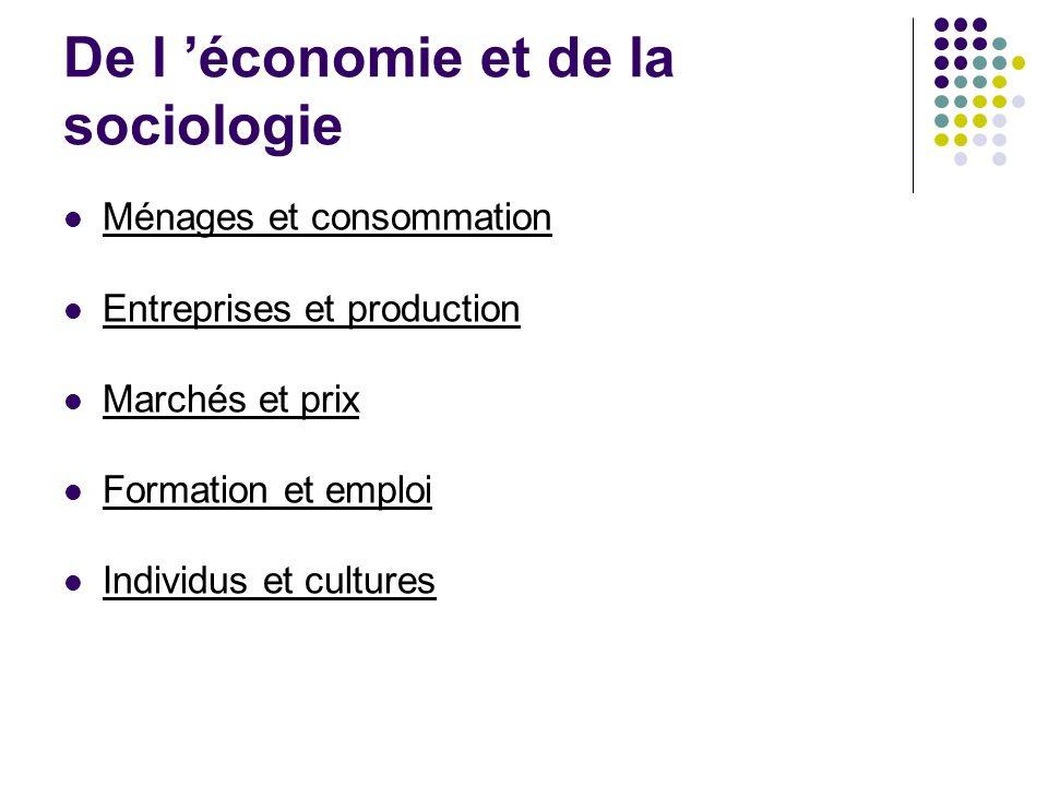 De l 'économie et de la sociologie