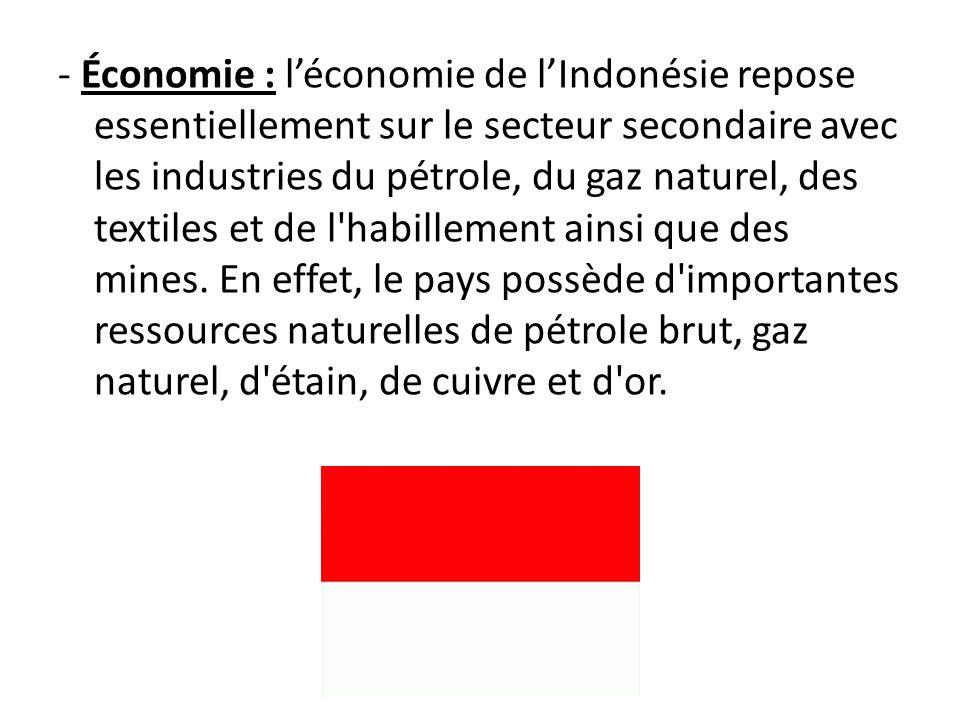 - Économie : l'économie de l'Indonésie repose essentiellement sur le secteur secondaire avec les industries du pétrole, du gaz naturel, des textiles et de l habillement ainsi que des mines.