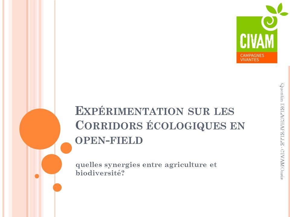 Expérimentation sur les Corridors écologiques en open-field