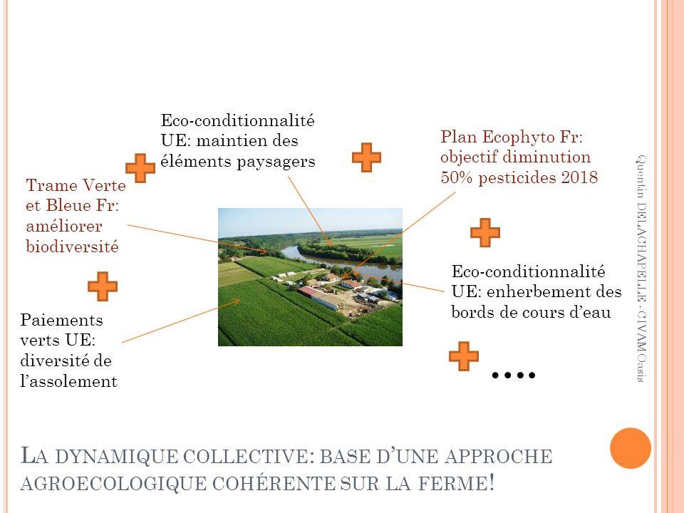 Eco-conditionnalité UE: maintien des éléments paysagers