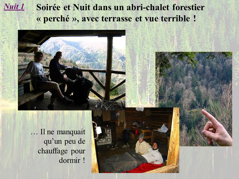 Nuit 1 Soirée et Nuit dans un abri-chalet forestier « perché », avec terrasse et vue terrible !