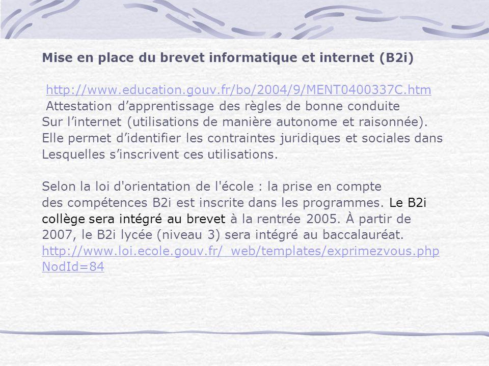 Mise en place du brevet informatique et internet (B2i)