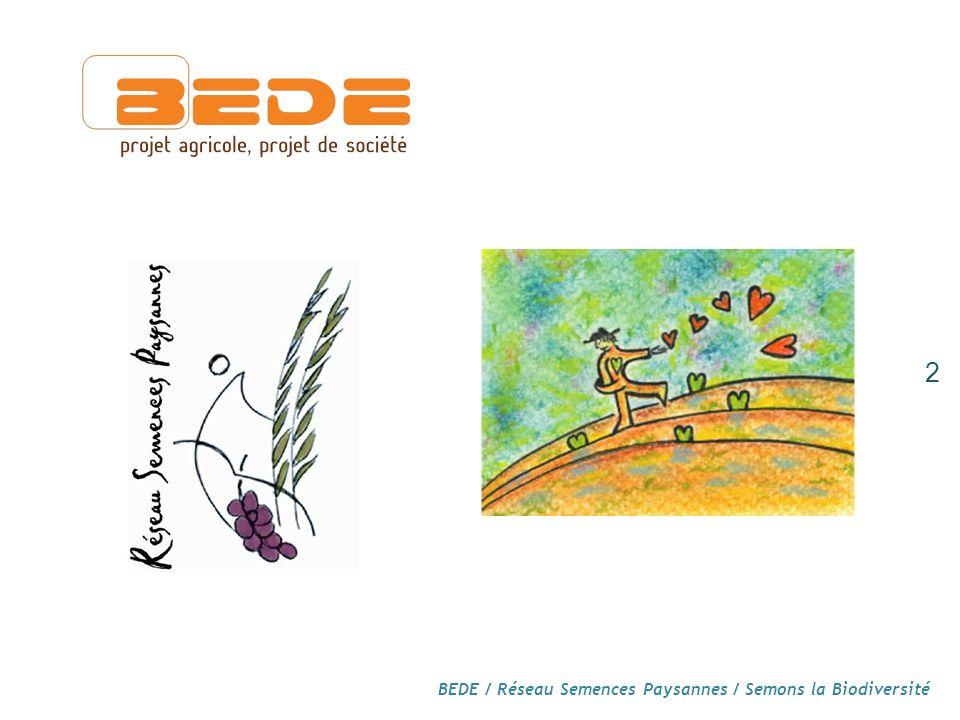 Réglementation sur les semences : décryptage du point de vue des semences paysannes