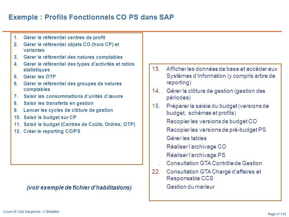 Exemple : Profils Fonctionnels CO PS dans SAP