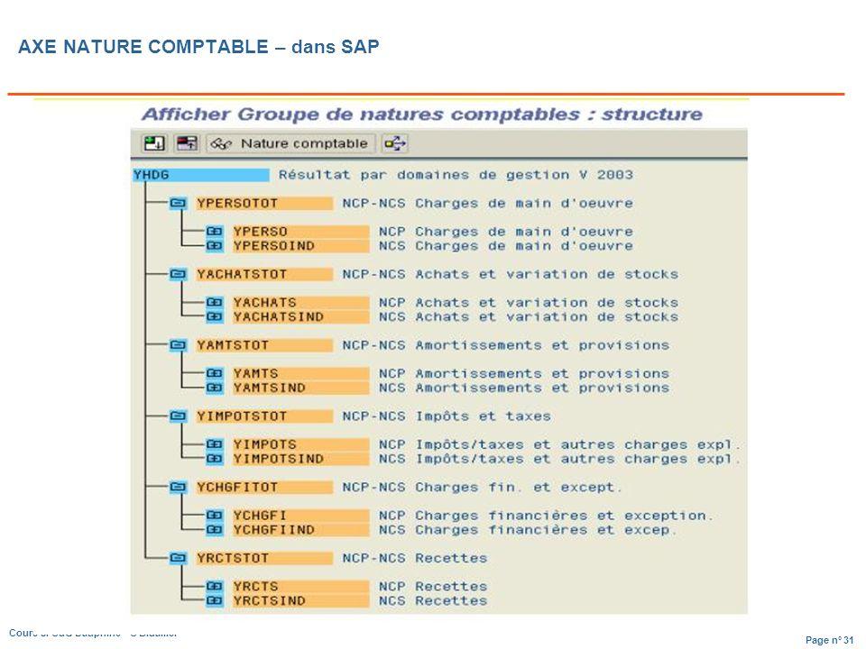 AXE NATURE COMPTABLE – dans SAP