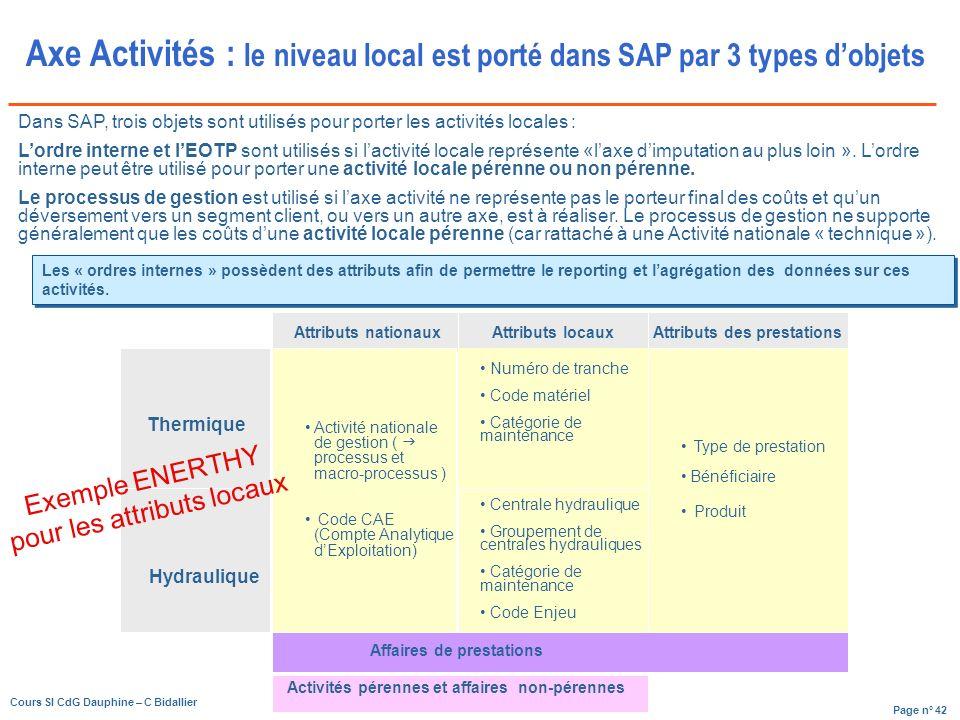 Axe Activités : le niveau local est porté dans SAP par 3 types d'objets