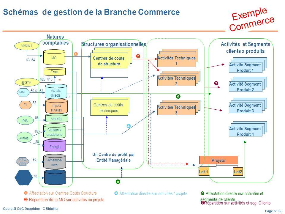Schémas de gestion de la Branche Commerce
