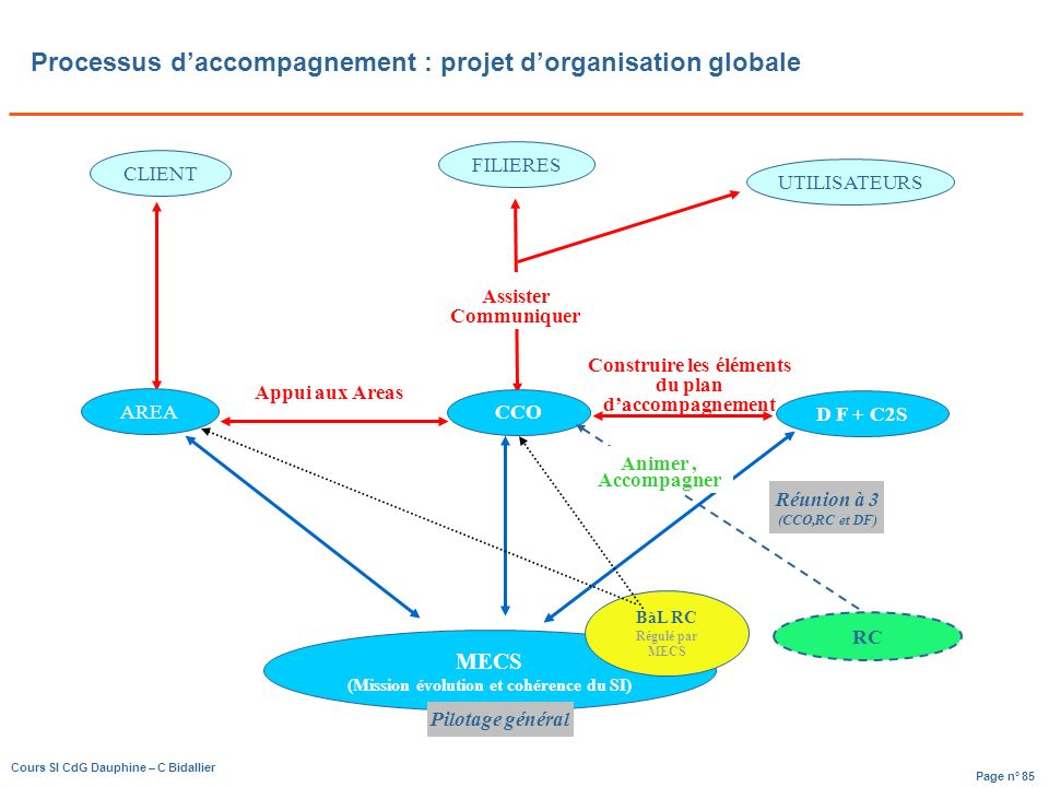 Processus d'accompagnement : projet d'organisation globale