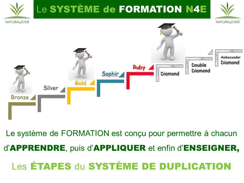 Le SYSTÈME de FORMATION N4E