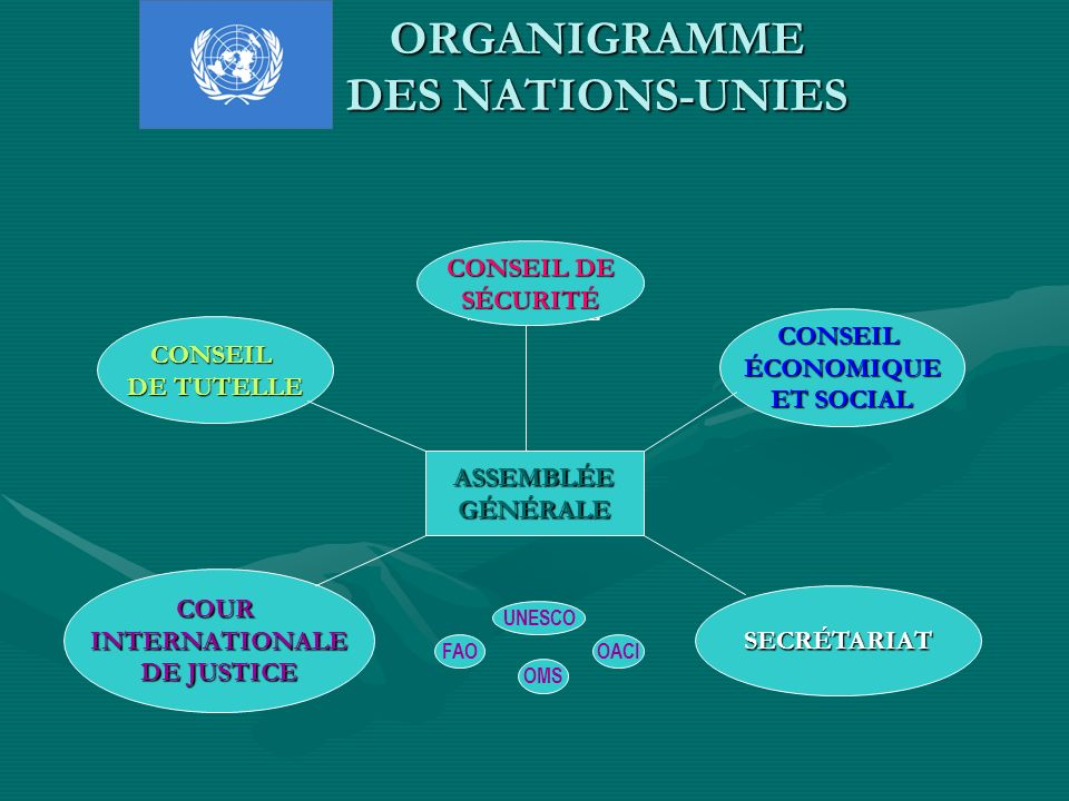 ORGANIGRAMME DES NATIONS-UNIES