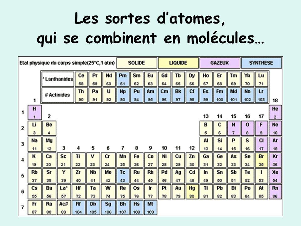 Les sortes d'atomes, qui se combinent en molécules…