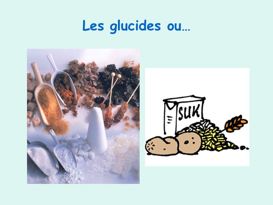 Les glucides ou…