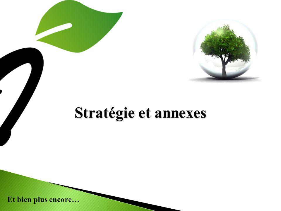 Stratégie et annexes 18