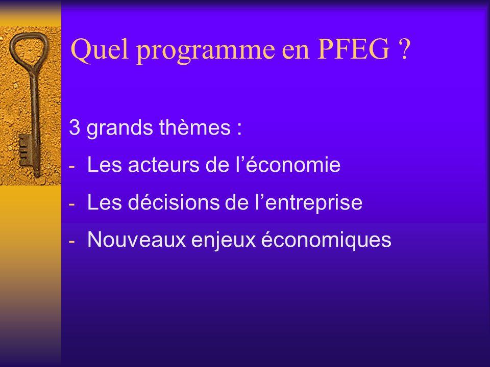 Quel programme en PFEG 3 grands thèmes : Les acteurs de l'économie