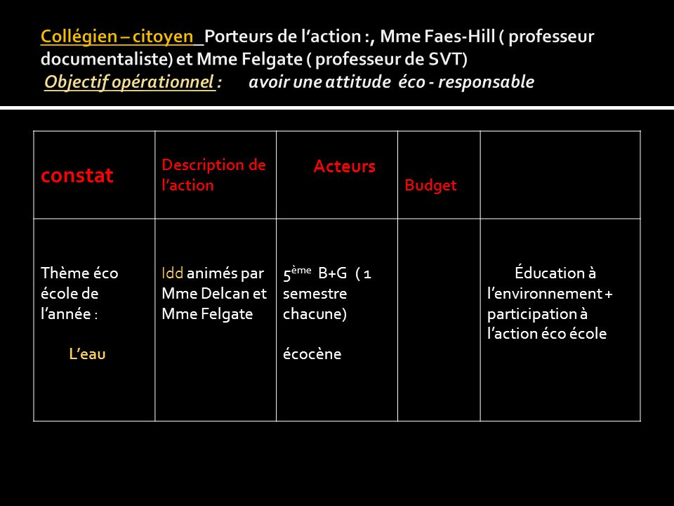 constat Description de l'action Acteurs Budget
