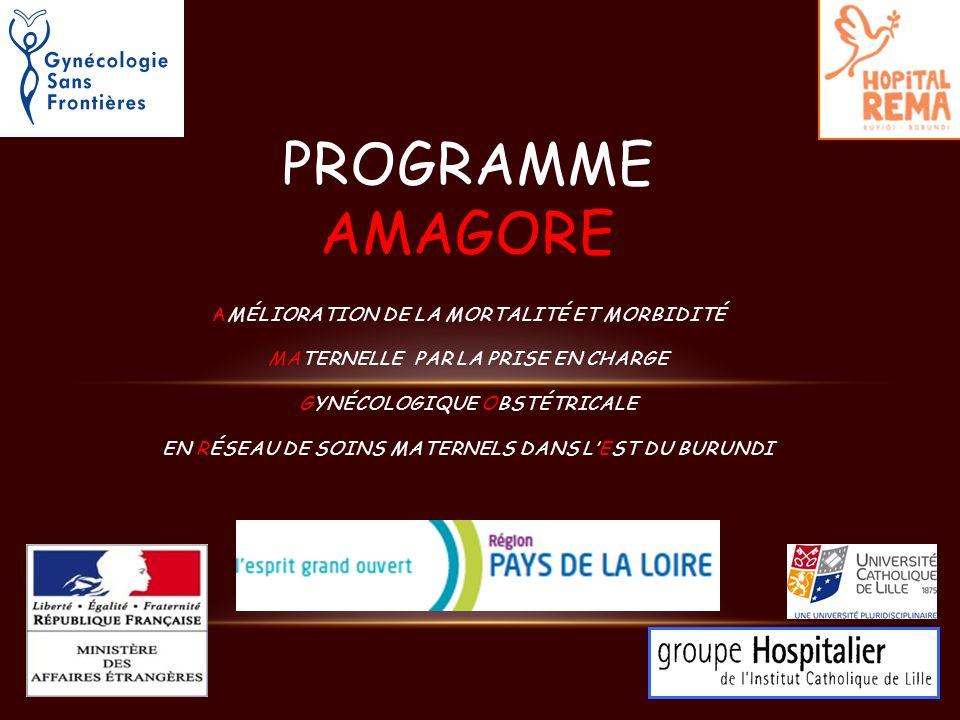 Programme Amagore Amélioration de la mortalité et morbidité Maternelle par la prise en charge Gynécologique Obstétricale en Réseau de soins maternels dans l'Est du Burundi